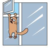 Как помочь кошке, выпавшей из окна?